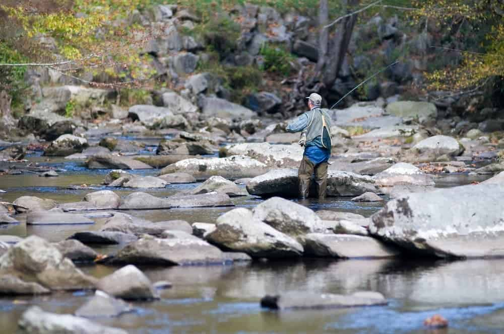 5 activities that are a must on your smoky mountain for Smoky mountain trout fishing