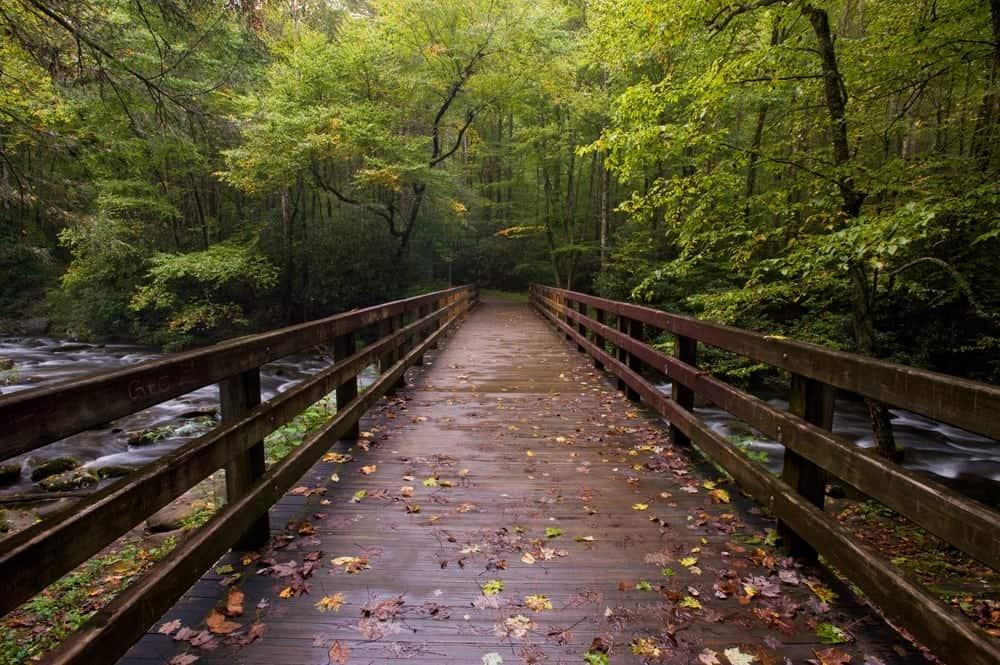 Bridge on Smoky Mountain hiking trail