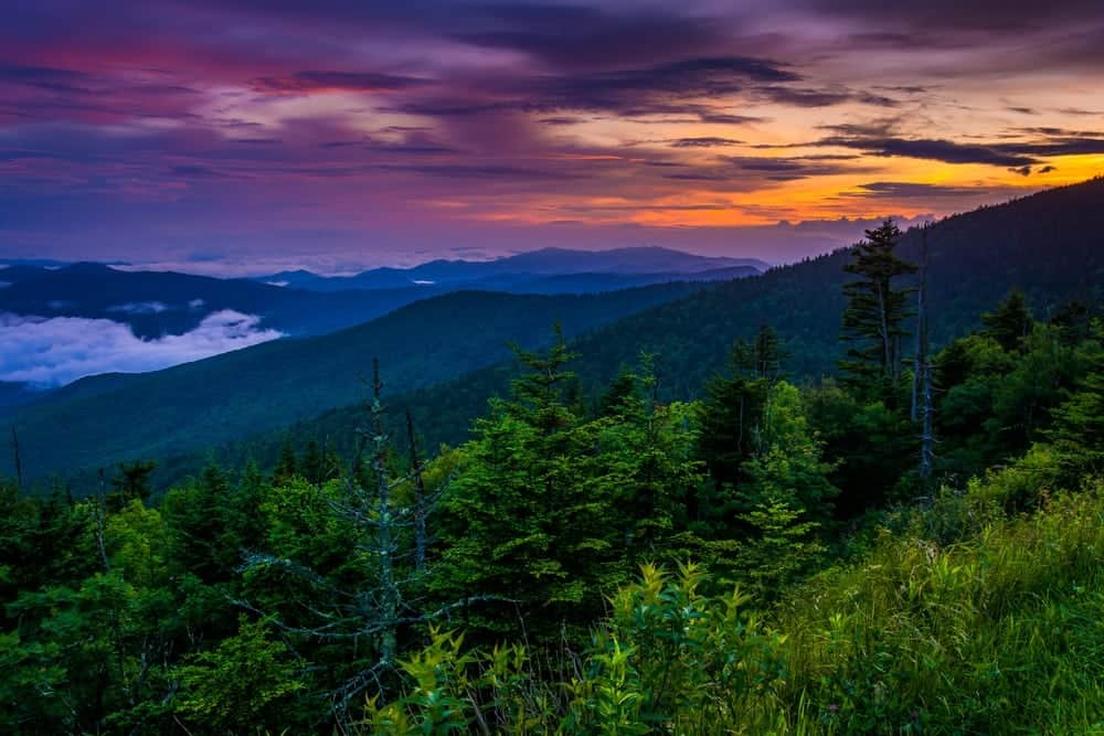 4 Tips For Planning Your Great Smoky Mountains National