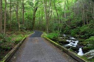 Roaring Fork Motor Nature Trail road
