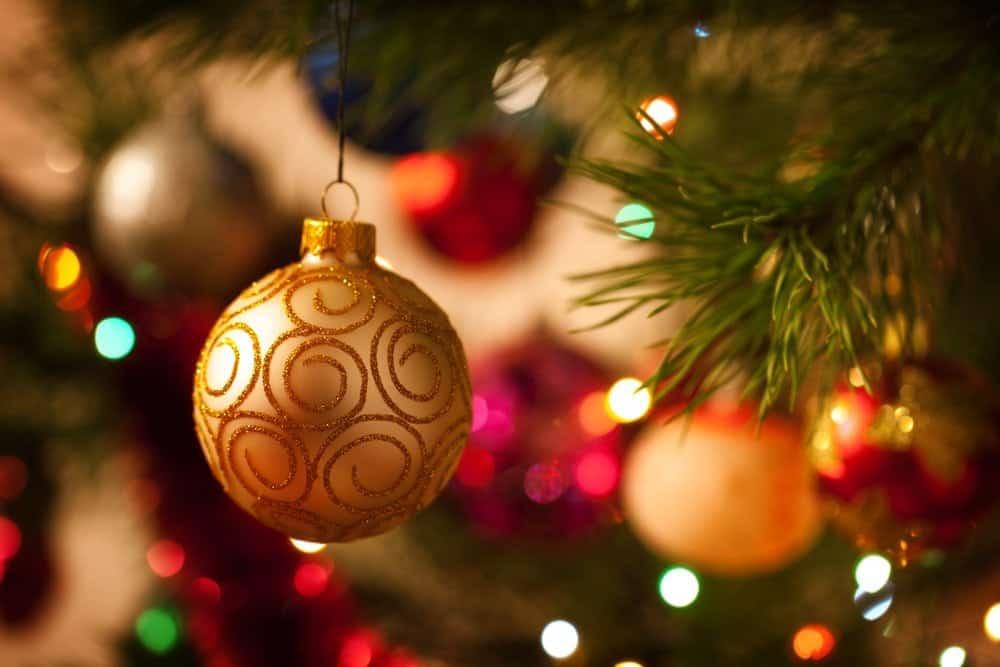 Christmas ornaments hanging on tree