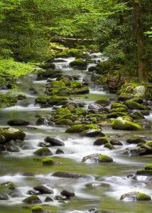 Smoky Mountain stream near Gatlinburg hotel